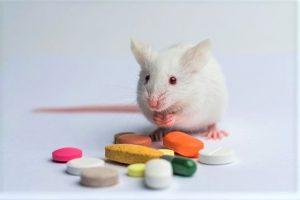 Limpieza y sanitización Farmacos Veterinarios